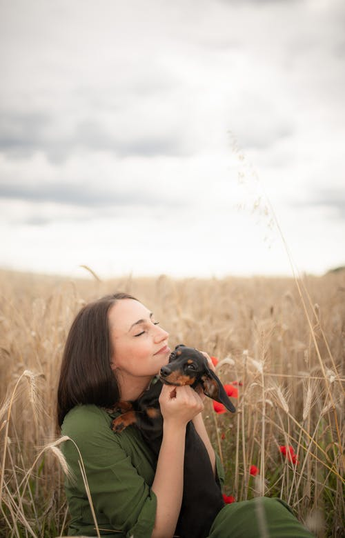 Happy young lady cuddling Dachshund puppy in meadow