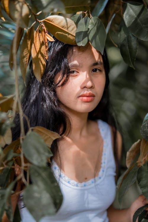 Immagine gratuita di adolescente, albero, armonia, aspetto