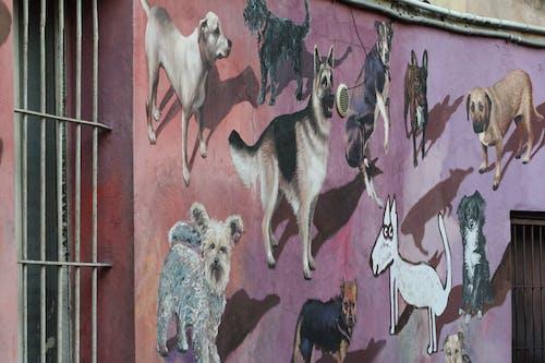Immagine gratuita di arte di strada, bulldog, cane