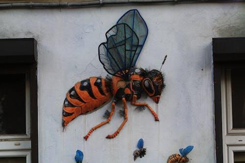 Immagine gratuita di ape, api, arte di strada