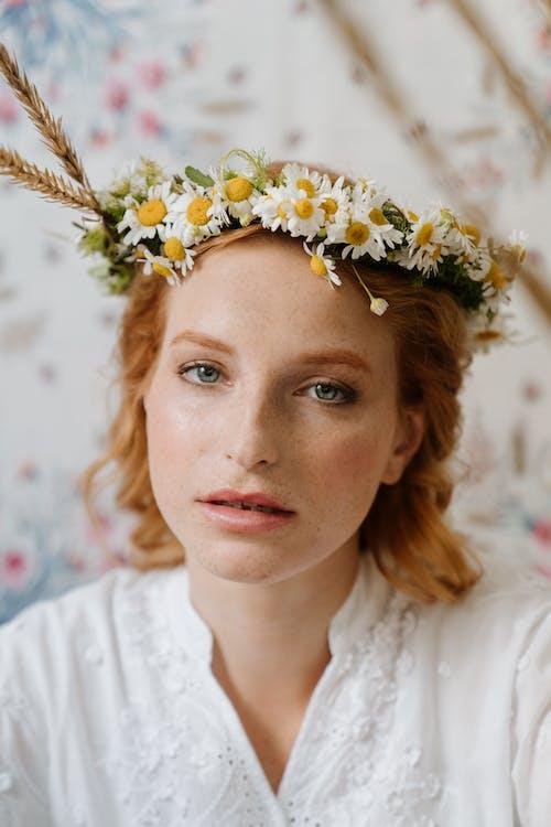 Foto profissional grátis de alma russa, atraente, bonito, camomila