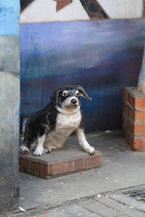 Immagine gratuita di arte di strada, bastardo, cane