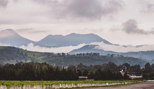 下雨後, 冷, 墨西哥, 多雲的 的 免費圖庫相片