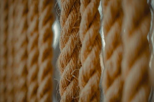 Бесплатное стоковое фото с веревка, волокна, глубина резкости, макросъемка