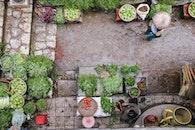 vegetables, people, street