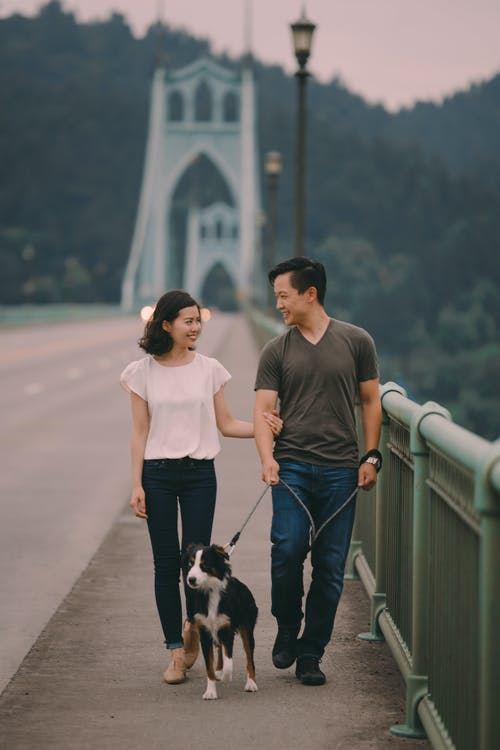 Man and Woman Walking on Bridge With Black and White Short Coated Small Dog