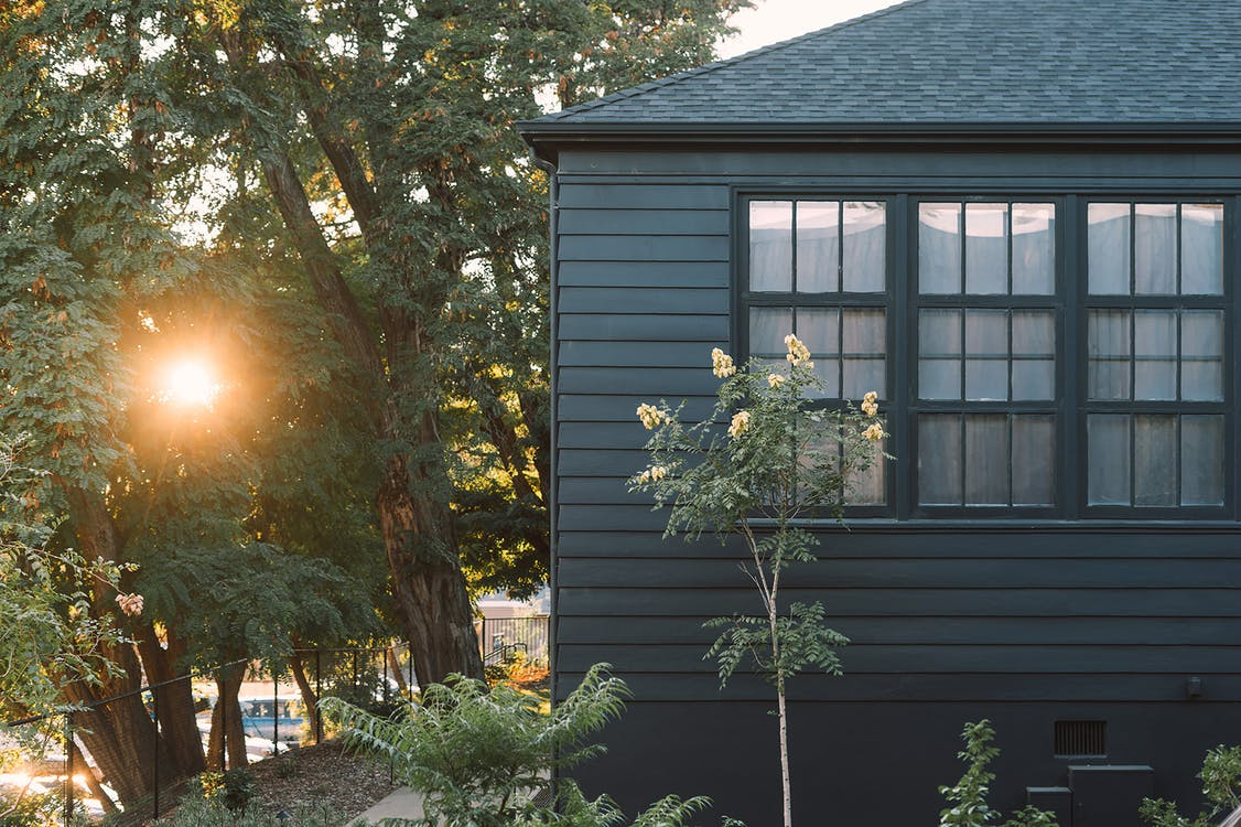 Cottage facade with garden illuminated by shiny sun
