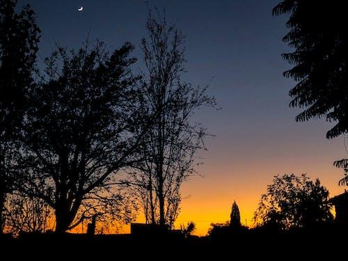 Free stock photo of beatiful landscape, sunrise