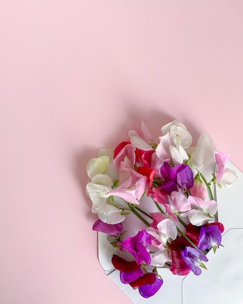 Immagine gratuita di amore, banner, banner di social media, bellezza