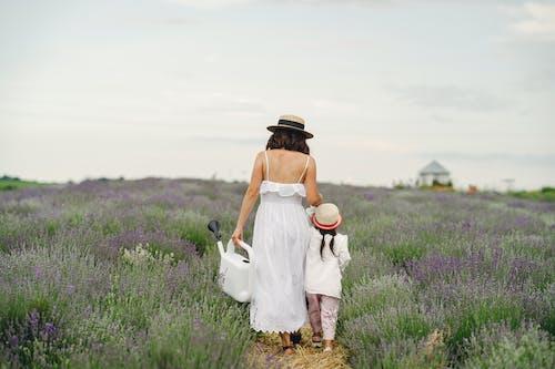 Gratis stockfoto met achteraanzicht, binden, bloemenveld