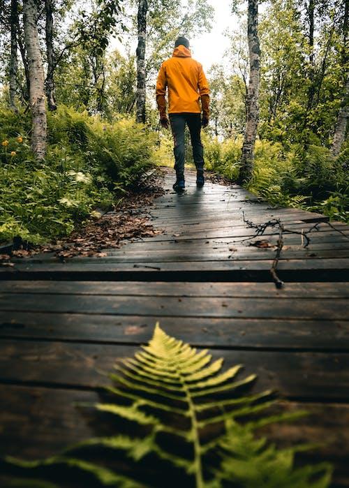 Person in Yellow Jacket Walking on Wooden Bridge