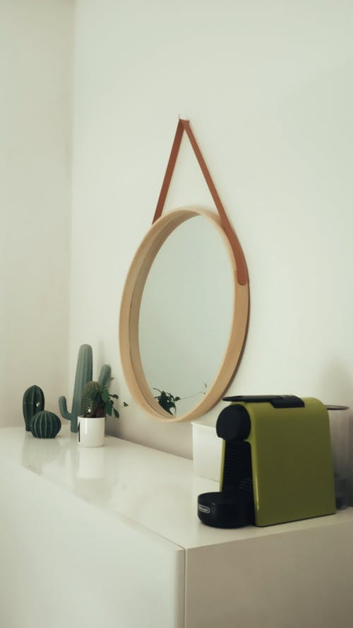 Interior of room with mirror and cactus