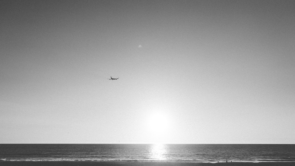 airplane, black-and-white, flying