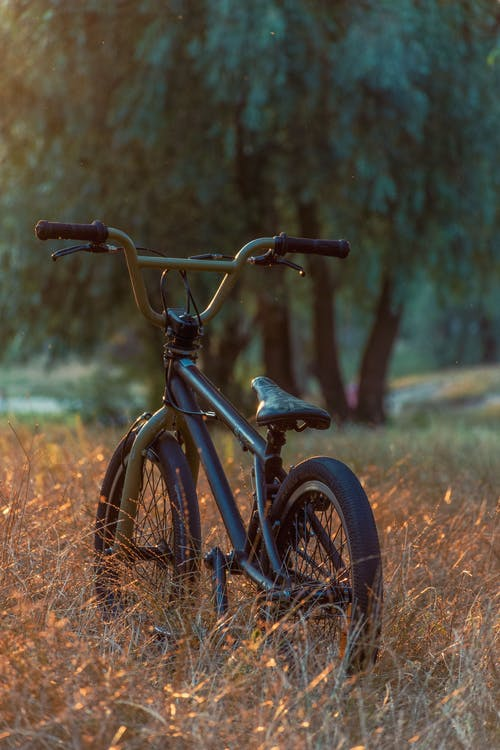 BMX, グリーンバイク, サイクリスト, さびたの無料の写真素材