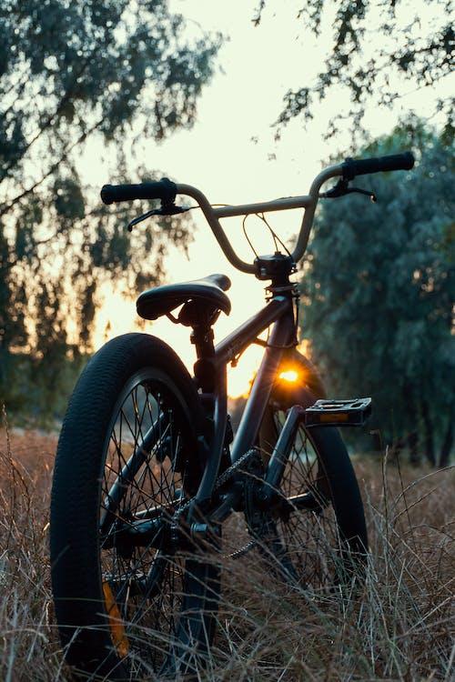 Gratis arkivbilde med bmx, forlatt, grønn sykkel, hjul
