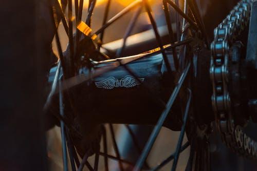 Gratis arkivbilde med bmx, grønn sykkel, gt-sykkel, motorsykkel