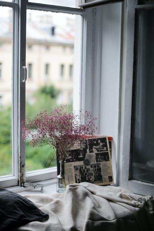 Δωρεάν στοκ φωτογραφιών με dylight, άνετο σπίτι, γυάλινο βάζο