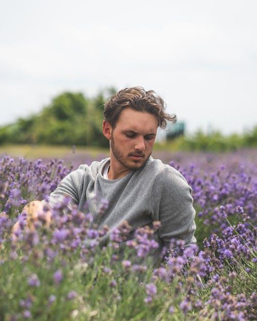 Základová fotografie zdarma na téma aromaterapie, farma, fialová, flóra