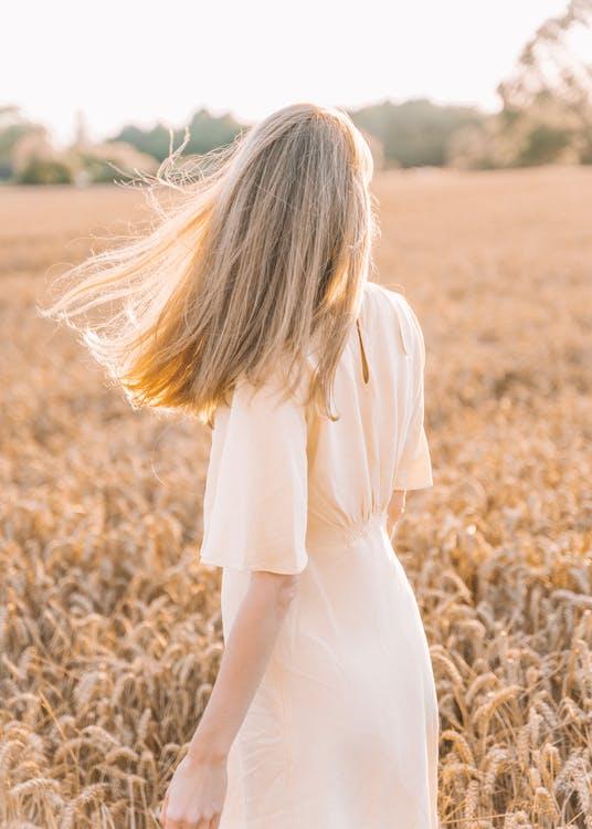 Základová fotografie zdarma na téma blond, cereální, dáma
