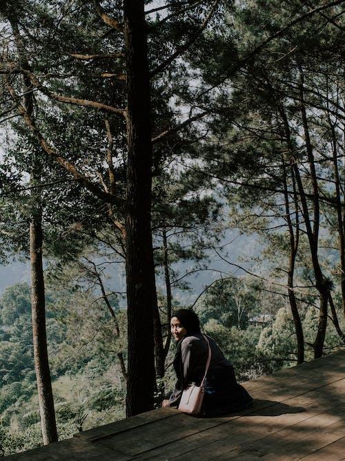 Ảnh lưu trữ miễn phí về ảnh, ánh sáng, bentang alam pegunungan