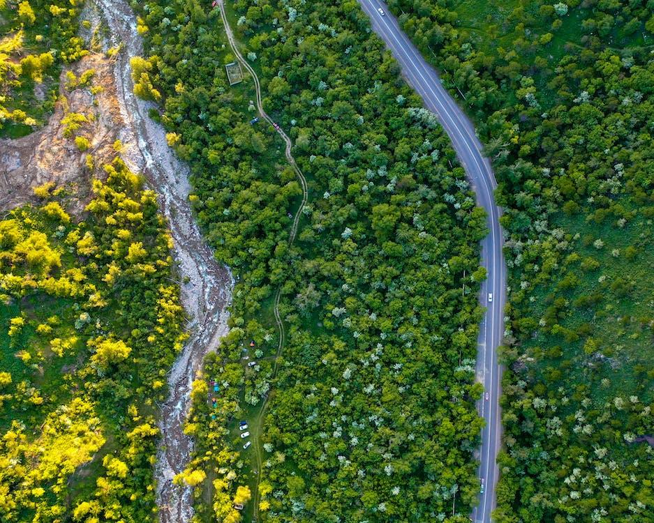 Foto profissional grátis de aéreo, agricultura, água