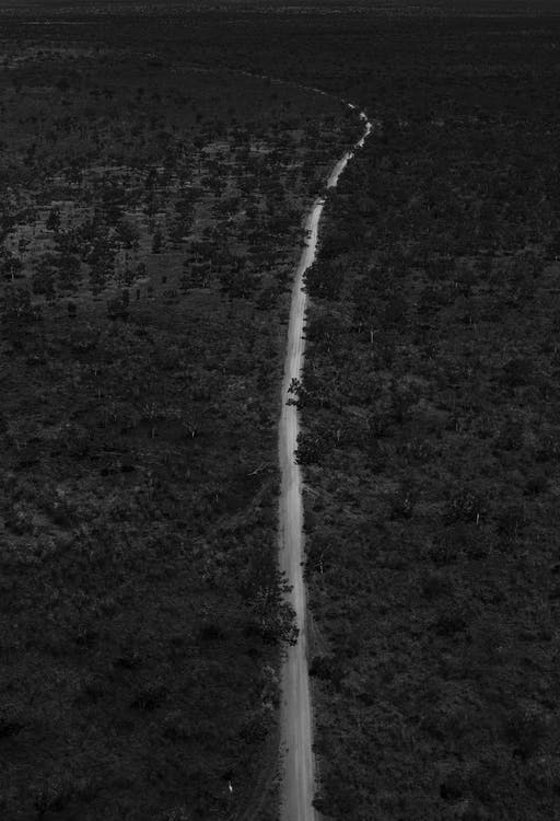 Black and white drone view of long narrow road running through flooded terrain with dense woods