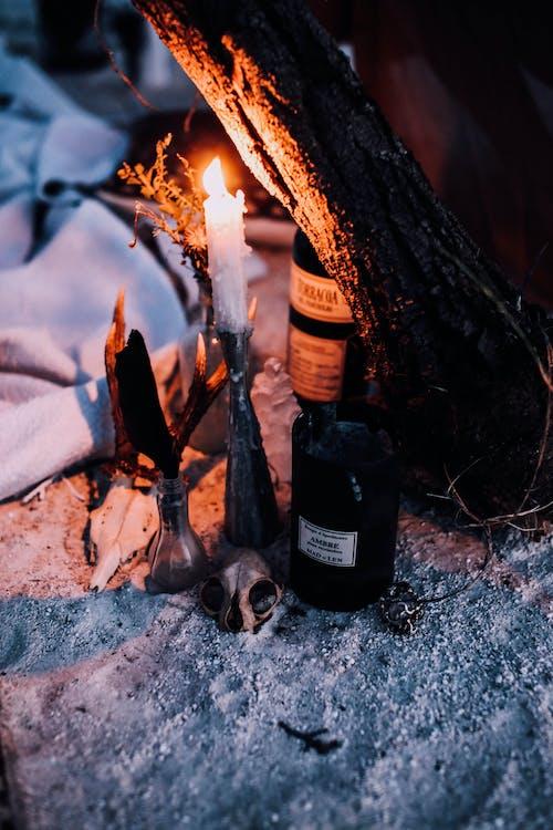 Kostenloses Stock Foto zu alkohol, alptraum, atmosphäre