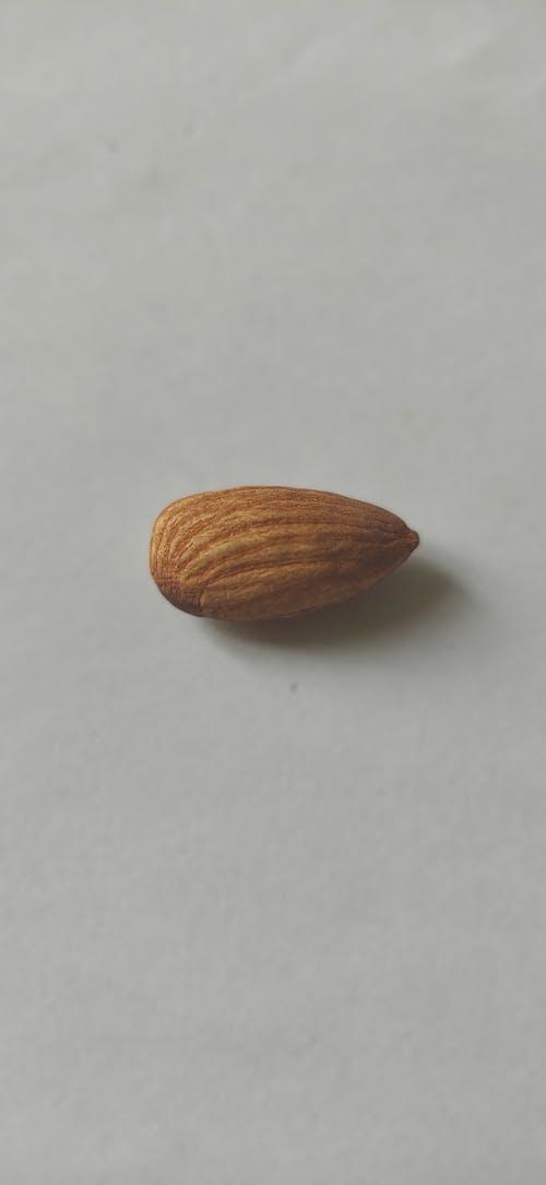 Ilmainen kuvapankkikuva tunnisteilla mantelimutteri, миндаль, миндальный орех, орех