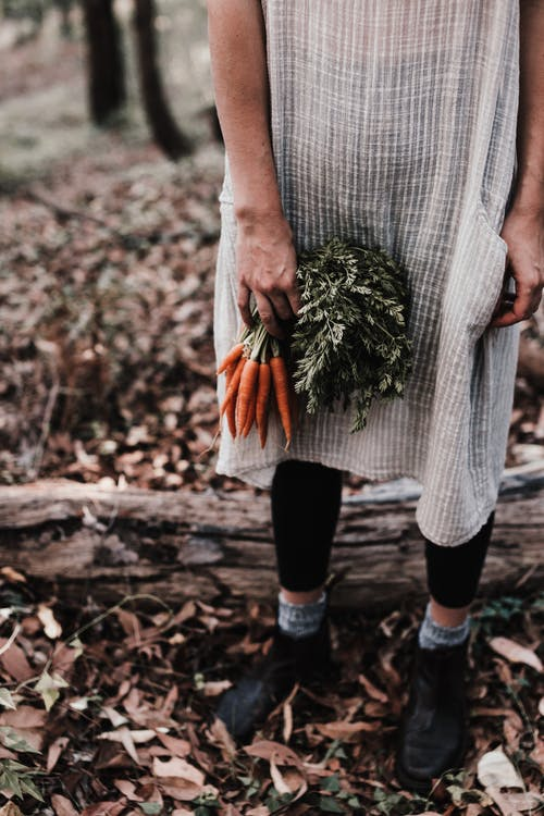 Woman carrying fresh carrots with green leaves