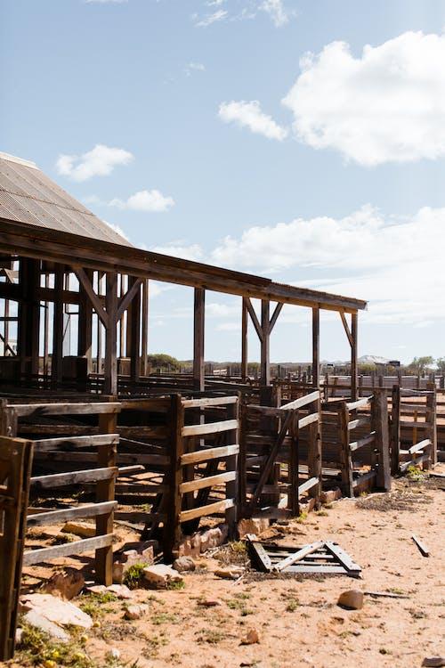 Destroyed wooden barn on sandy terrain in sunlight