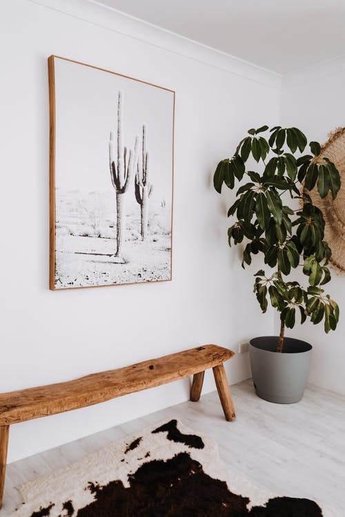 Interior of modern apartment with potted plant and painting