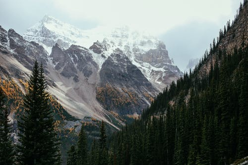 Picturesque scenery of mountain range with snowy tops located among coniferous forest in highland