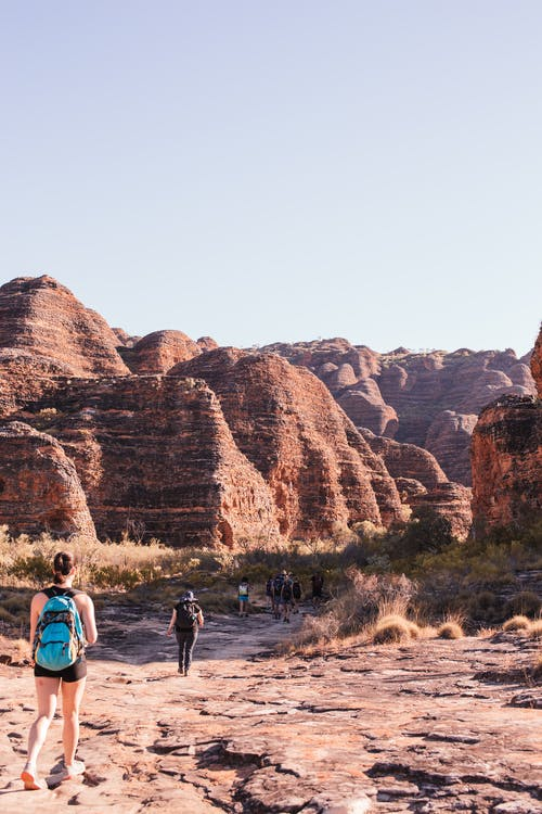 Back view group of anonymous hikers walking on dry terrain near Bungle Bungle range in Purnululu National Park on sunny day
