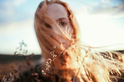 Immagine gratuita di alba, autunno, bellissimo