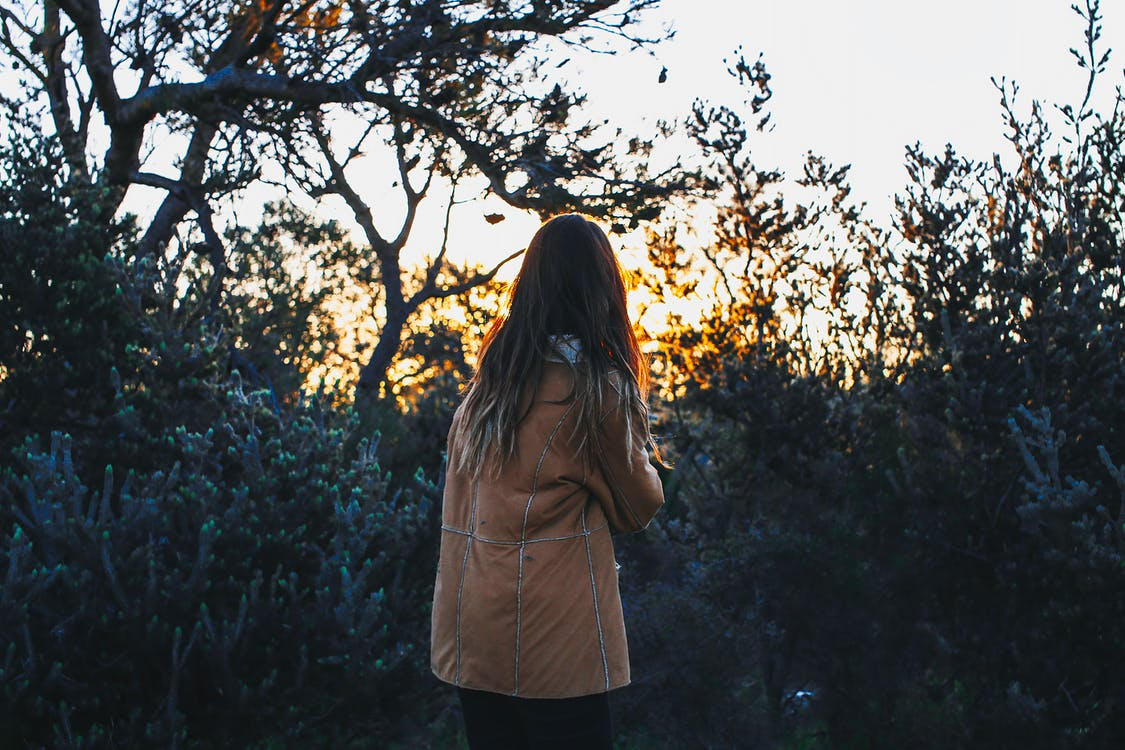 Back view of unrecognizable female tourist with long hair in stylish warm clothes standing near lush green trees and enjoying sunset time in nature