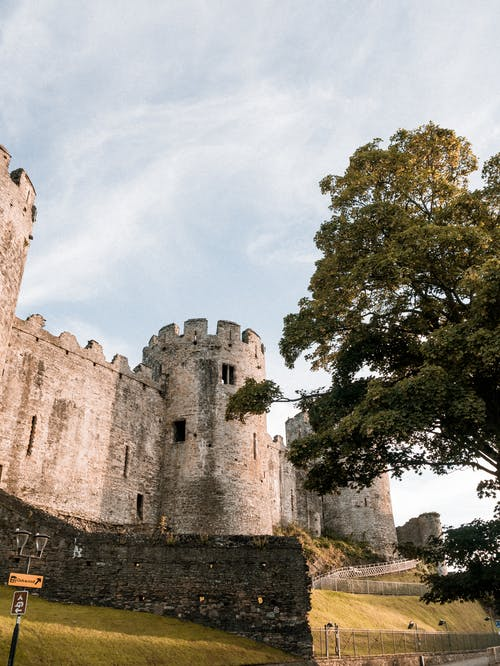 Medieval stone castle in sunny park