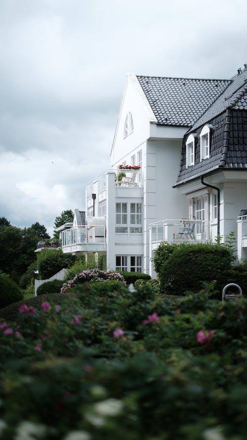 Gratis stockfoto met architectuur, bloemen, buiten, buitenshuis