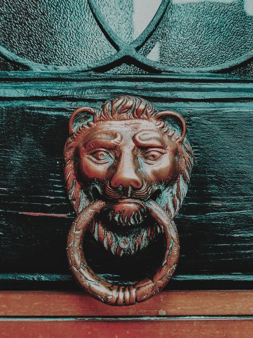 Bronze lion on decorated wooden door