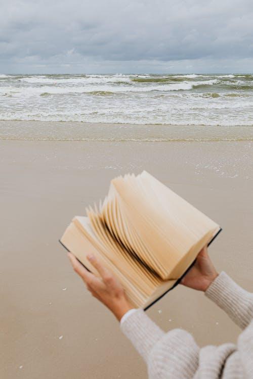 Imagine de stoc gratuită din carte, citi, citind