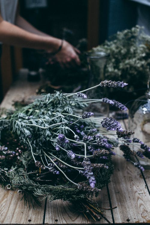 Crop unrecognizable person arranging dried lavender flowers in bunches while standing at wooden table
