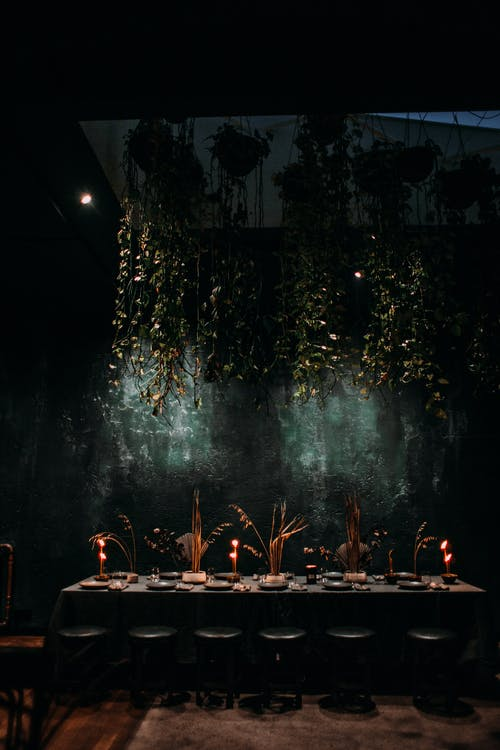 Interior of contemporary dark restaurant with long set dining table with burning candles under hanging verdant plants