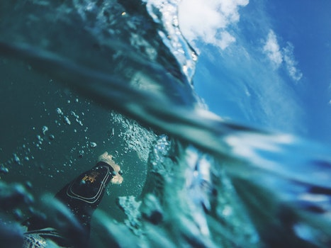 Free stock photo of person, water, underwater, surface