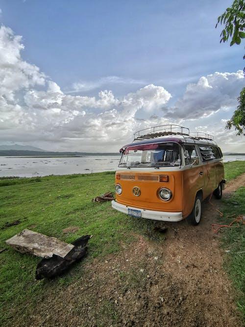 Photos gratuites de beetle, camping, coccinelle