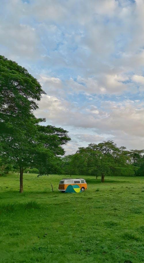 Photos gratuites de camping, kombi, vw bus
