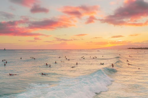 People Surfing on Sea Waves during Sunset
