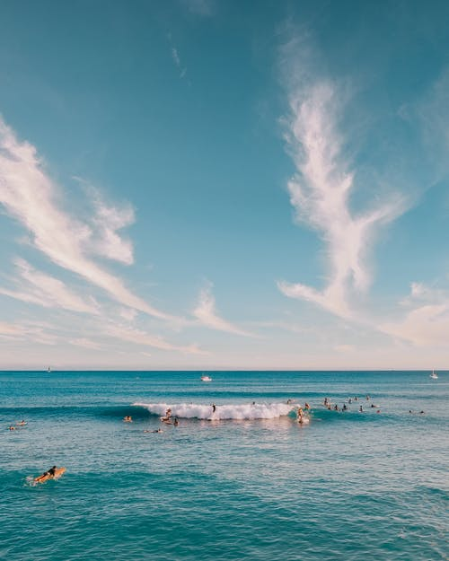 People Swimming on Sea Under Blue Sky