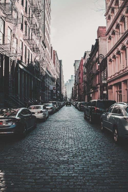 Základová fotografie zdarma na téma architektura, auto, budova