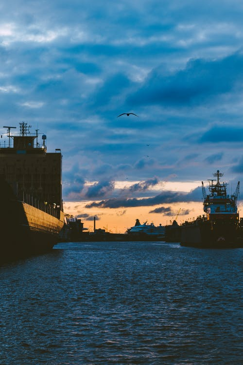 Free stock photo of birds, cargo ships, clouds, harbour