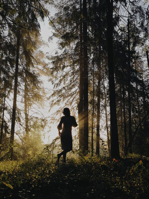 Anonymous woman standing in woods
