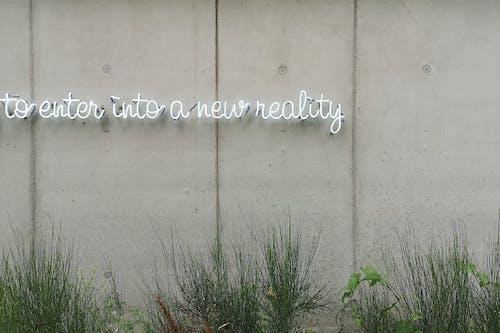 Gratis lagerfoto af arkitektur, at indgå i en ny virkelighed, beskidt, betonmur